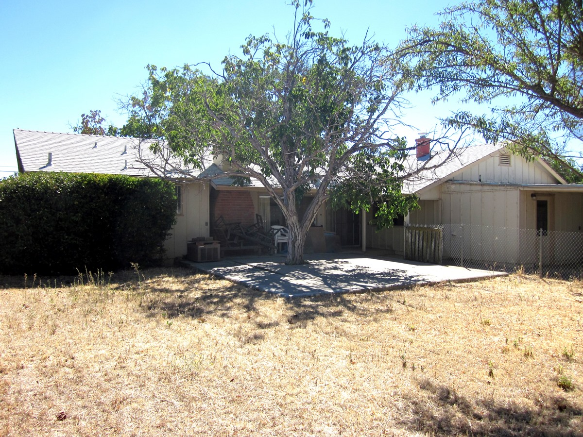 12 Backyard II